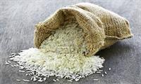 نیازی به واردات برنج خارجی نیست