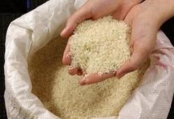 کشف تریاک از کیسه های برنج در رشت!