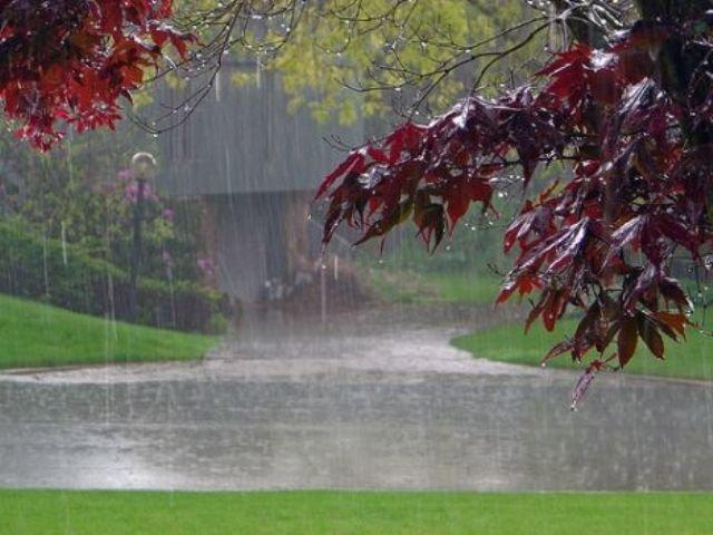 هوای گیلان تا پایان هفته بارانی است