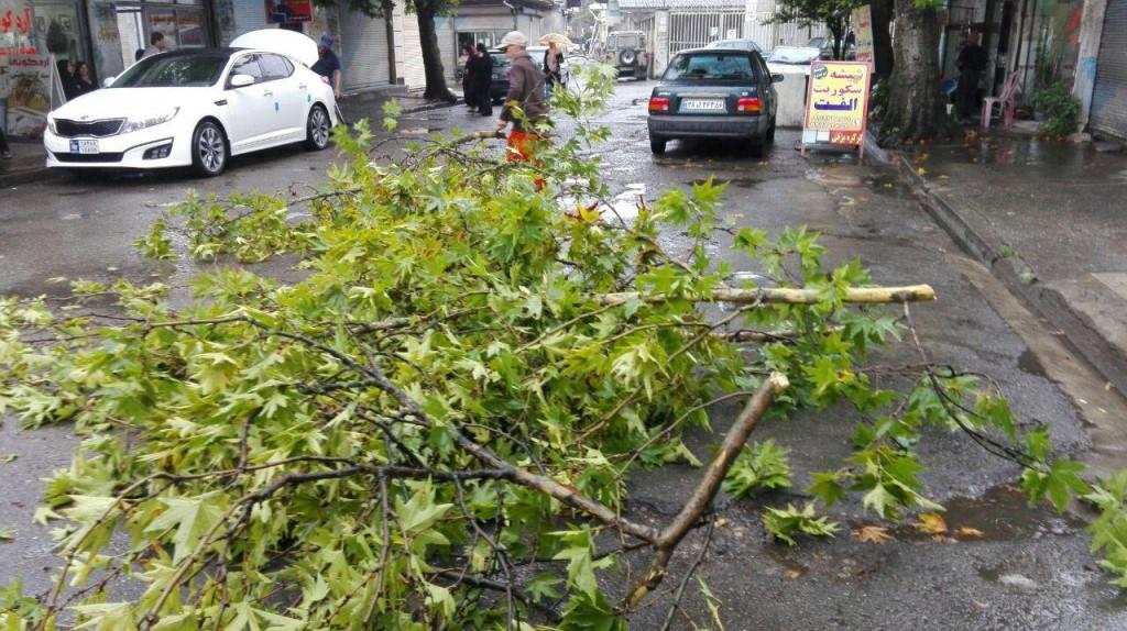 باران شدید حادثه آفرید+تصاویر
