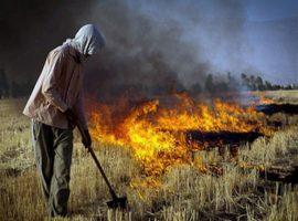 برخورد قضایی با ۶۶ نفر از مسببین آلودگی هوا در گیلان
