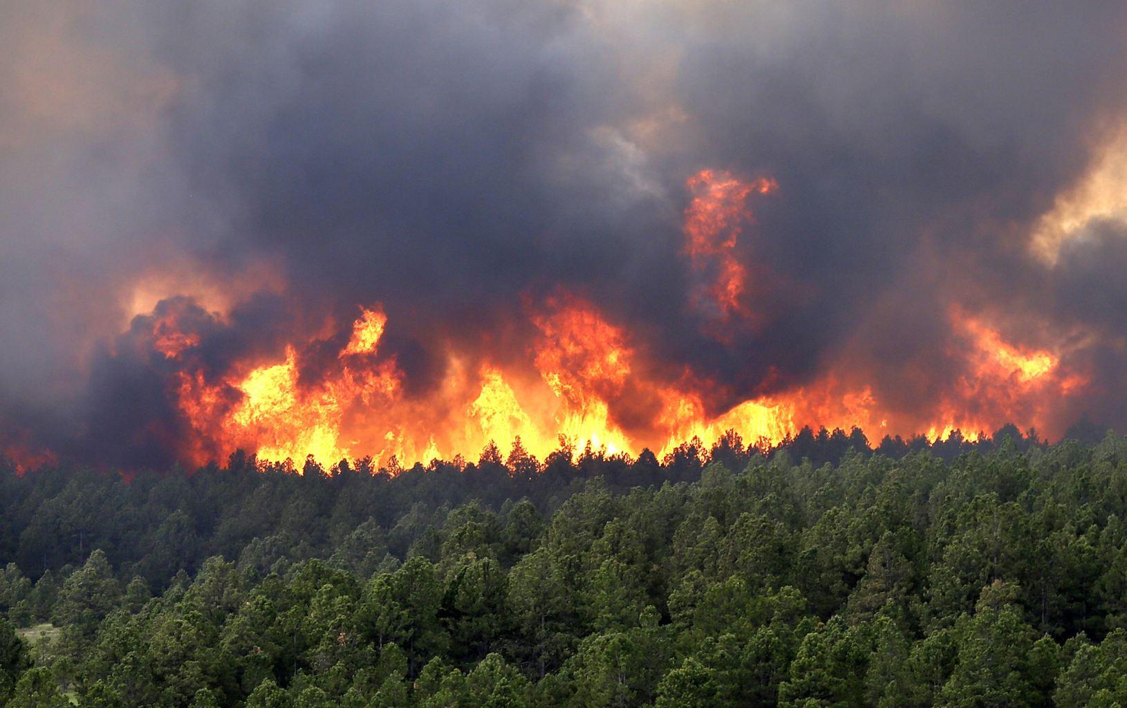 گرمای شدید هوا و افزایش خطر آتش سوزی در استان گیلان