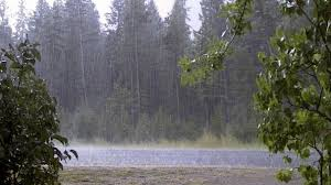 بارش باران و رعد و برق در گیلان آغاز می شود