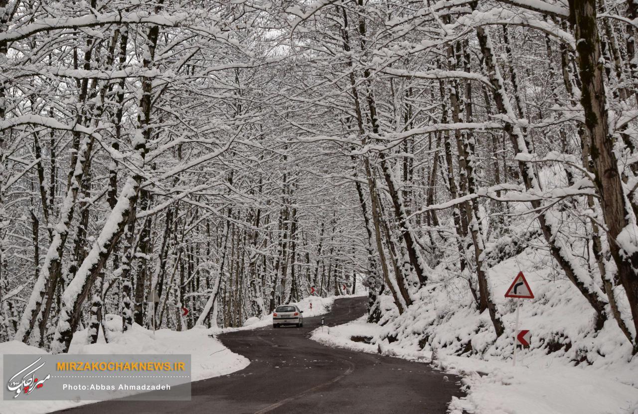بارش برف و باران در سراسر کشور/آخرین وضعیت جادهها