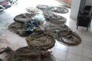 کشف ۶۵ رشته انواع دام صید ماهیان رودخانه ای در صومعه سرا