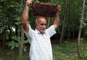 زنبورها این مرد گوراب زرمیخی را نیش نمیزنند