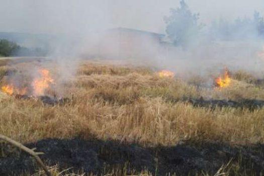 آتش در شالیزار/ دودِ سوزاندن کاهوکلش در چشم مردمان ضیابر و اباتر