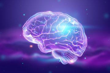 ۱۵ مواد غذایی برای تقویت حافظه و تمرکز ذهن