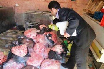 ۹۰۰ کیلوگرم گوشت غیربهداشتی در صومعه سرا کشف و ضبط شد