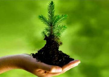 توسعه پایدار برحفظ محیط زیست